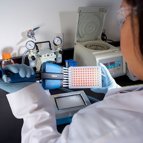 Protein-Sample-Prep-and-Detection